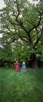 Colonial Woman under old tree at Tudor House, DC